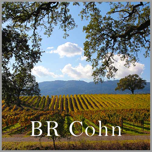 Video Production – Wineries – BR Cohn